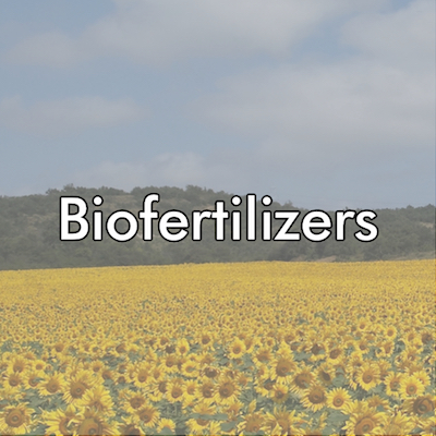 Industry - Biofertilizers